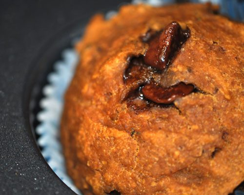 Pumpkin Pecan Chocolate Chip Skinny Muffins