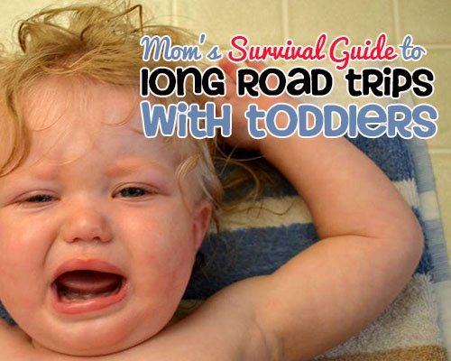 Tips for Road Trips with Toddlers